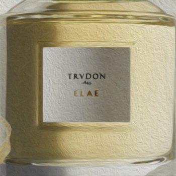 Trudon 1643